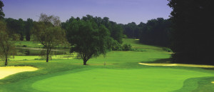 The 1st Annual Helping Up Golf Tournament to benefit HUM