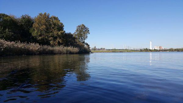 Canoe & Scoop (video & photos) 7